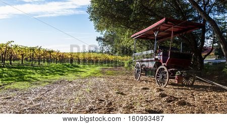 Wine Carriage And Vineyard