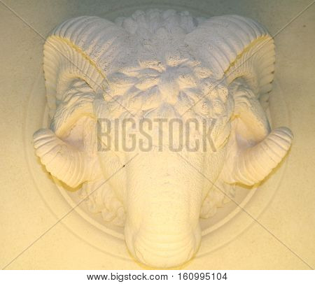 Bas-relief of a ram's head from a stone