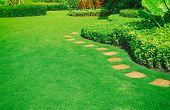 Pathways with green lawns, Landscaping in the garden,curve walkway on green grass field and flower garden poster