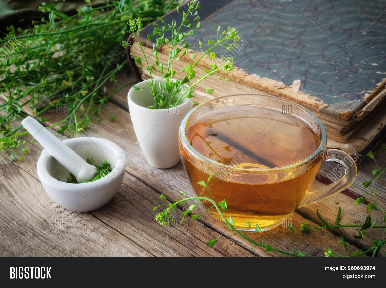 Herbal Tea Cup, Bunch Image & Photo (Free Trial) | Bigstock