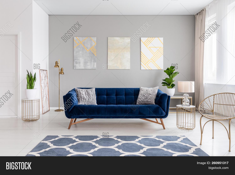 Elegant Navy Blue Sofa Image Photo Free Trial Bigstock