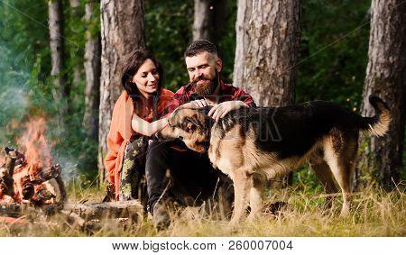 Couple Pat German Shepherd Dog Near Bonfire, Nature Background.