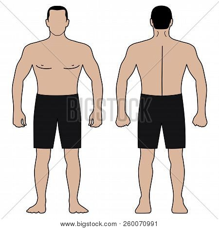 Fashion Man Body Full Length Template Figure Silhouette In Shorts (front, Back Views), Vector Illust