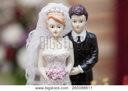 Wedding couple marriage doll cake topper with tuxedo suit and white weddding dress poster