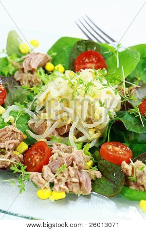 Delicious green salad with tunny and scion