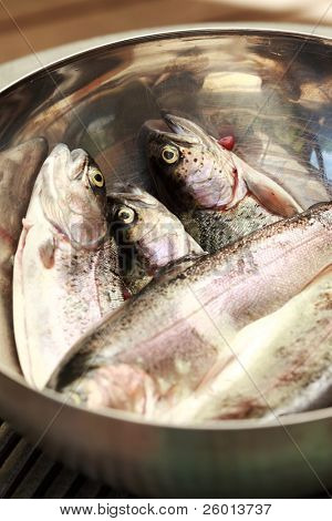 Fresh trouts ready for grilling or baking in the bowl