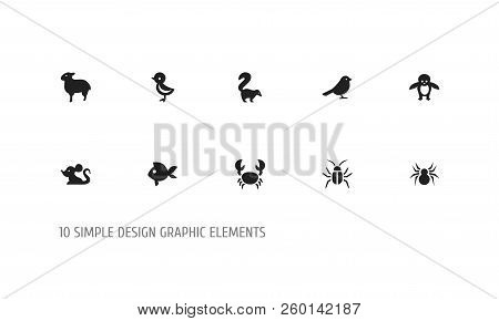 Set Of 10 Editable Zoology Icons. Includes Symbols Such As Bird, Sheep, Smelly Animal And More. Can