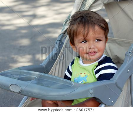 An eighteen-month boy enjoying a summertime stroller ride.