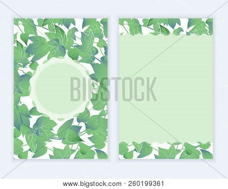 Green Ivy Leaves Invitation Card Template Design