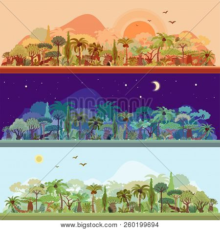 Vector Collection Of Tropical Rainforest Landscapes With Palms And Other Tropical Trees In Different