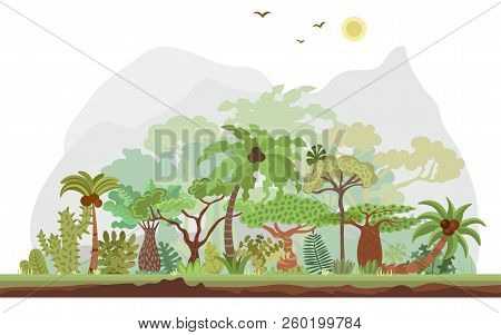 Vector Tropical Rainforest Landscape With Palms And Other Tropical Trees. Tropical Forest Panoramic