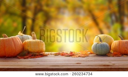 Autumn background with maple leaves and pumpkins.Harvest or Thanksgiving background