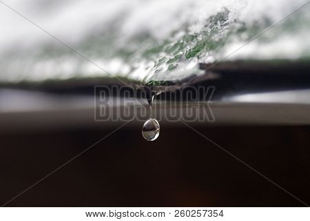 Drop Of Water Ready To Fall From Green Shingle Roof