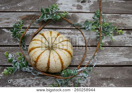 A Pumpkin With A Twirl Of Vine With Leaves On Wooden Background.