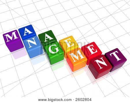 Management In Colour