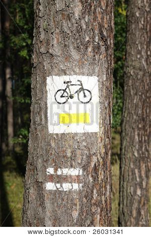 Bicycle path sign on the tree
