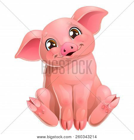 The Cute Pink Pig Sits On White
