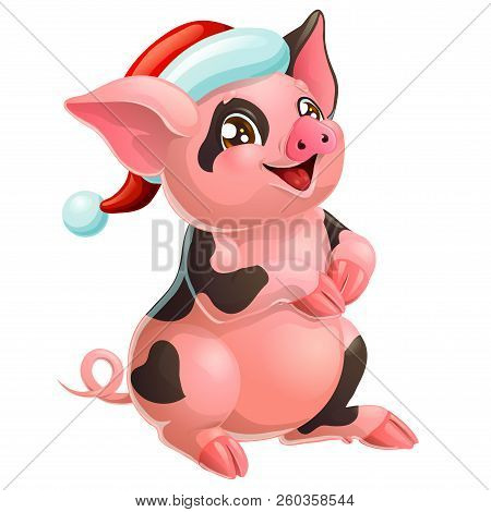 Lovely Black And Pink Pig In Cap On White