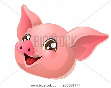 The Lovely Pink Pig Head On White