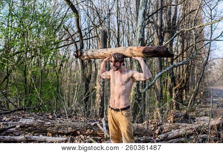 Lumberjack Or Woodman Sexy Naked Muscular Torso Gathering Wood. Man Brutal Strong Attractive Guy Col