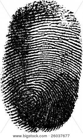 Vector fingerprint on white background