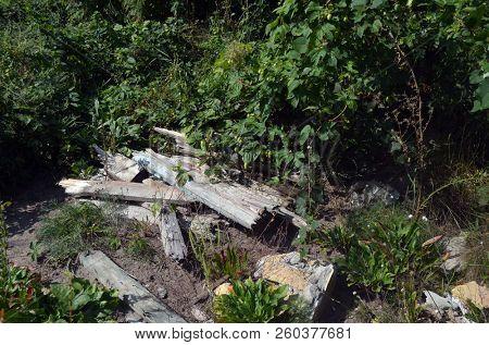 Ecology of Ukraine. Nature near Ukrainian capital.Environmental contamination. Illegal junk dump. August 31, 2018.Near Kiev, Ukraine