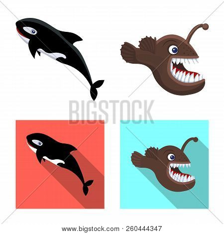 Vector Design Of Sea And Animal Icon. Set Of Sea And Marine Vector Icon For Stock.