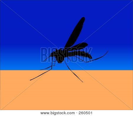 this is a mosquito about to suck the blood from an arm. poster
