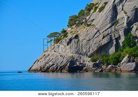 Rock Separating The Sea And Sky, Tree Growing On A Rock, Blue, Clear Sky, Clear Sea Water, Crimea,ns