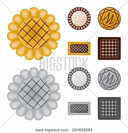 Isolated Object Of Biscuit And Bake Icon. Set Of Biscuit And Chocolate Stock Vector Illustration.