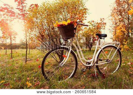 White Retro Style Bicycle With Basket With Orange, Yellow And Green Leaves, Parked In The Colorful F