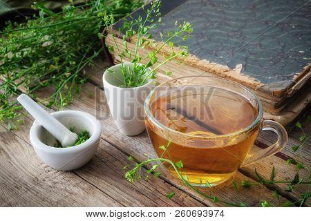 Herbal Tea Cup, Bunch Of Shepherds Purse, Mortar Of Bursa Pastoris Medicinal Herbs And Old Book. Her