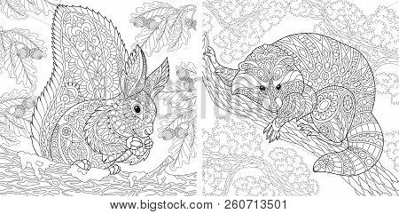 Coloring Pages. Coloring Book For Adults. Colouring Pictures With Squirrel And Raccoon. Antistress F