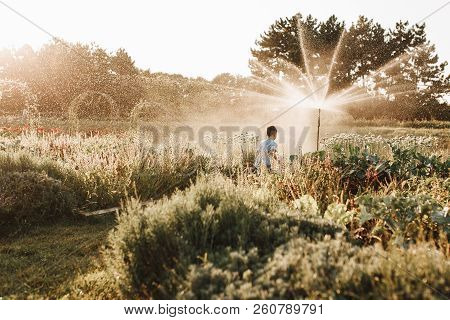 Child Playing With Garden Sprinkler. Kid Play With Gardening Hose Watering Flowers