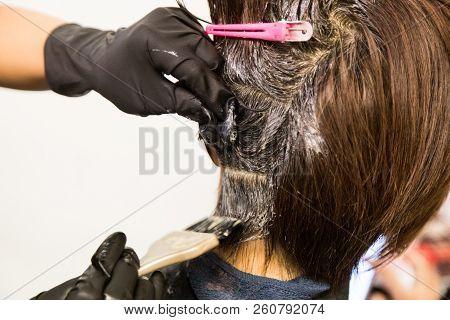 Closeup Of Hair Dresser Applying Chemical Color Dye Onto Hair