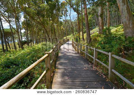 Figueiras beach wood runway in Islas Cies island of Vigo in Spain