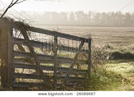 Gate on missouri farm in early morning