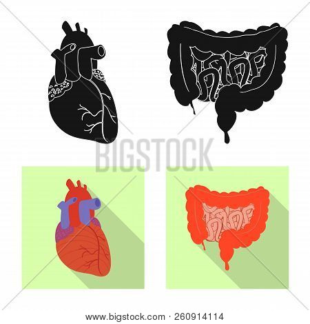 Vector Illustration Of Body And Human Sign. Collection Of Body And Medical Vector Icon For Stock.