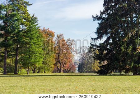 Large Glade In The City Park Covered With Grass Among Of Conifers And Deciduous Trees In Autumn Day