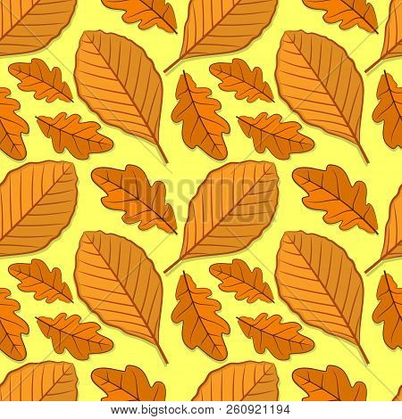Seamless Pattern With Oak And Beech Autumn Leaves. Vector Illustration.