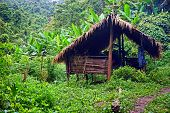 traditional hut, campsite in lush tropical forest, Nam Ha National Protected Area, Laos poster