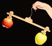 Apples of green and red colors with unequal weight. poster
