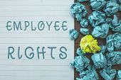 Conceptual hand writing showing Employee Rights. Business photo text All employees have basic rights in their own workplace poster