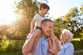 Grandparents Giving Grandson Ride On Shoulders In Summer Park Against Flaring Sun poster