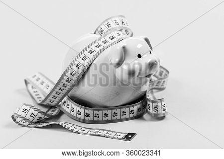 Budget Limit Concept. Financial Consulting. Economics And Finances. Pig Trap. Budget Crisis. Plannin