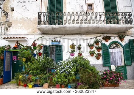Bari, Italy, August, 2016: Picturesque Street With Old Small Houses Decorated With Colorful Flowered
