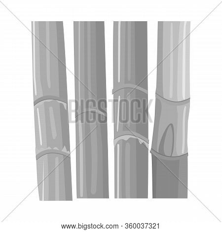 Vector Design Of Stem And Sugar Icon. Web Element Of Stem And Cane Stock Vector Illustration.