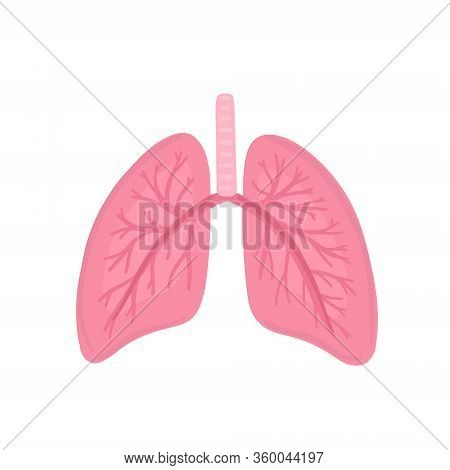 Vector Healthy Human Lungs. Illustration For Label, Advertisement Of Pulmonary Medicine, Poster Or B