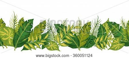Tropical Palm Leaves Seamless Vector Border. Exotic Nature Repeating Pattern. Jungle Florals. Monste