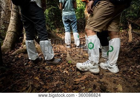 Khao Yai, Nakhon Ratchasima, Thailand - February 1, 2020 : Legs Of Hikers Covered By White Long Sock